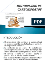Metabolismo de Carbohidratos