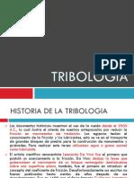 Tribologia Jazmin
