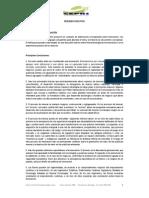 CF17 Resumenejecutivo Taxonomia de La Innovacion (1)