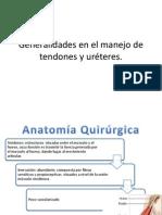 Generalidades en El Manejo de Tendones y Uréteres
