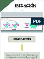 1.hibridacion