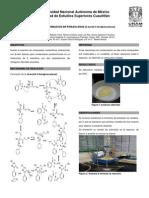 QOIII-REP-05 piralizona.pdf
