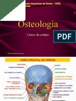 Anatomia - Ossos Do Crânio