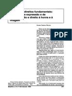 Colisao de Direitos Fundamentais Liberdade de Expressao e de Comunicacao e Direito a Honra e a Imagem