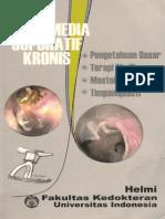 Helmi - OMSK.pdf