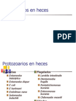 parasitologia variada3