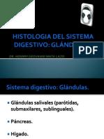 5 Histologia Del Sistema Digestivo Parte II Publicacion