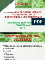 Ronald Jorge Veliz