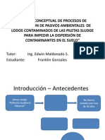 Diseño Conceptual de Procesos de Remediación De
