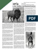 02 El Búfalo Para Los Indios Norteamericanos Red Historia (1)