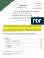 TUM Paper Caffeine Biosynthesis