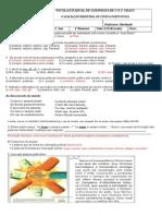 1º Ano - Português 4ª Bimestral - Com Respostas