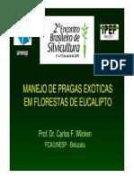 Manejo de Pragas Exoticas Em Florestas de Eucalipto