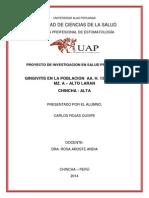 Trabajo de Investigacion Carlos Alto Laran