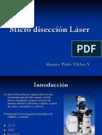03 - 01 Micro Diseccion Lacer