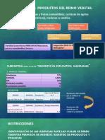 Diapositiva Seccion Manzana