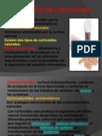 Medicamentos corticoides.pptx
