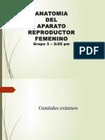 APTO. REPRODUCTOR FEMENINO