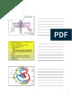 Anatomia Sistemului Limfatic 2009 [Compatibility Mode]
