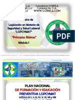 Modulo i Manual Completo Lopcymat[1]