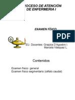Etapas PAE Valoración -EX.FISICO