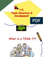 Team Structure & Development
