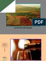ESPAÑA - Vino Español