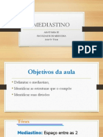 Mediastino.aula 03