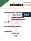 Bicapa Lipidica( Sem de Biologia)
