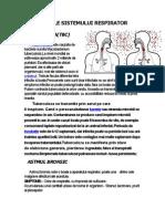 Boli Ale Sistemului Respirator