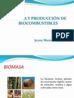 BIOMASA-2014-II-sem.pptx