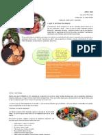 Material de Familia Idenna 2012