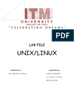 Linux Lab File