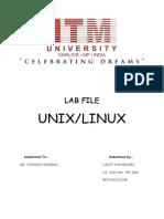 Linux Lab File