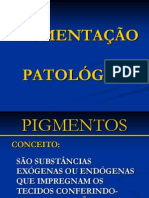 calcificacaoepigmentacaopatolgicas-110623035601-phpapp02