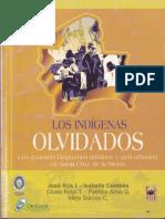 Los Indigenas Olvidados - Jose Ros _ Isabelle Combes(10)