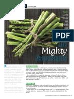 """""""The Mighty Asparagus"""""""