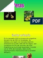 Circuito Productivo Peras 1193853158162558 1
