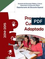 Propuesta Curricualra Adaptada 2014 2015