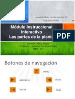 modulo instruccional interactivo - las partes de la planta