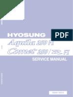 GV250 GT250 EFI Service Manual