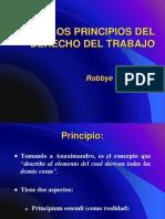 los principios del derecho laboral.pdf