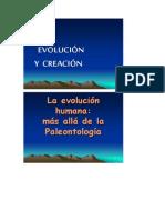 Evolucion y Creacion