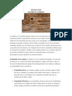 Informe Trabajo Final.docx