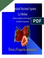 Fresa (Fragaria Vesca)3