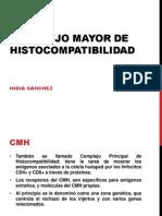 Complejo Mayor de Histocompatoliga Pp