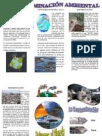 Triptico - Contaminación Ambiental