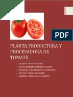 123080130 Planta Procesadora de Pure de Tomate
