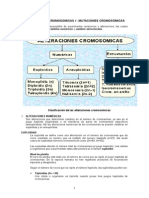 Alteraciones Cromosomicas i