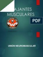RELAJANTES-MUSCULARES